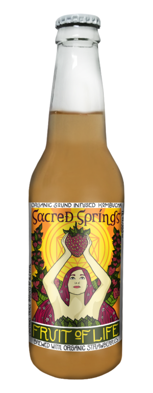 Sacred Springs Kombucha - Fruit of Life 4-Pack