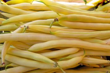 Beans, Yellow - Tantré  Farm