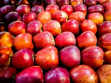 Almar Orchards -  Organic Liberty Apples