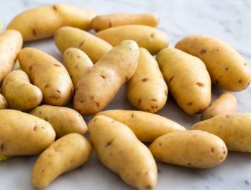 Tantré Farm - Potatoes, Fingerling