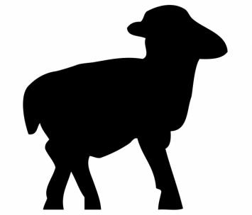 S&S Whole Lamb 25-30 lbs. - 1 week notice