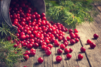 Michigan, Pesticide-Free Cranberries (5-pack)