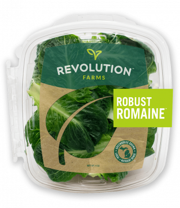 Robust Romaine Lettuce