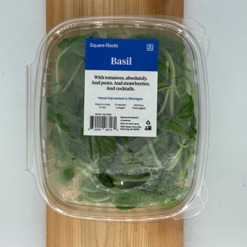 Basil, Pesticide-Free