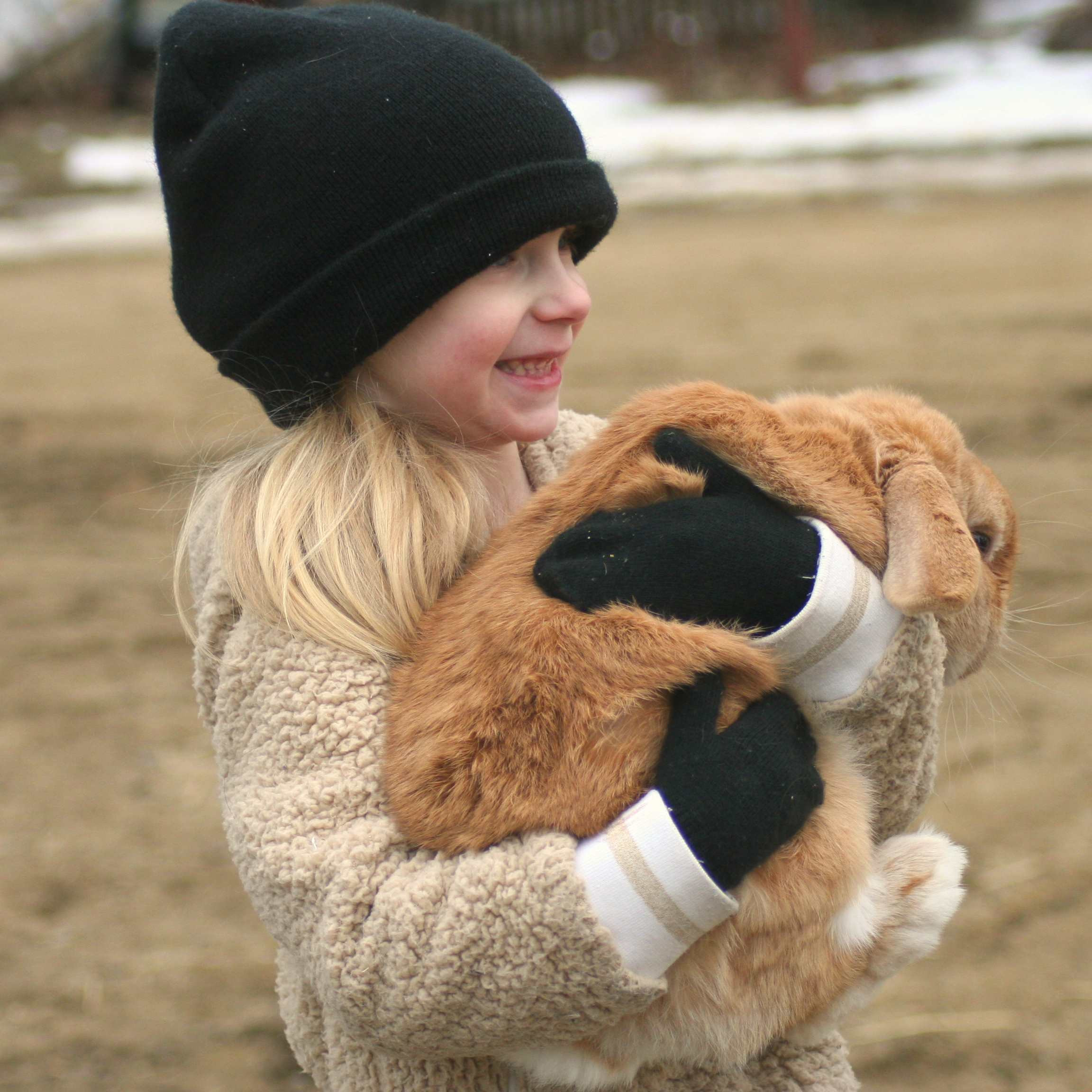 A young visitor holds one of our rabbits