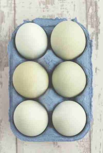 Duck Eggs - 1 doz