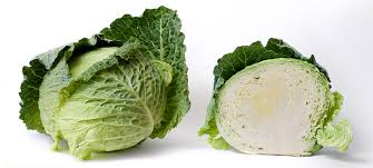 Organic Cabbage - Sorry we are out of cabbage