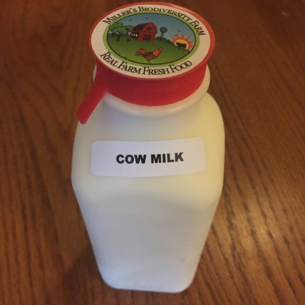 A2 COW Milk Sample, Raw (Plastic)