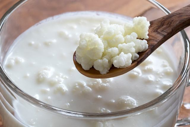 Why and How Kefir Exists?