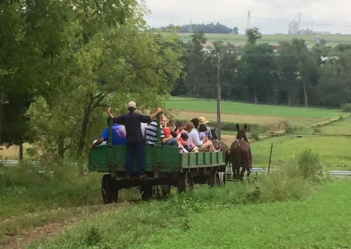 New educational workshops added to Farm Day
