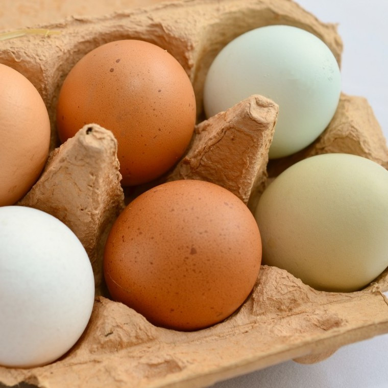 Chicken Eggs, Soy Free, Multicolored Country Select