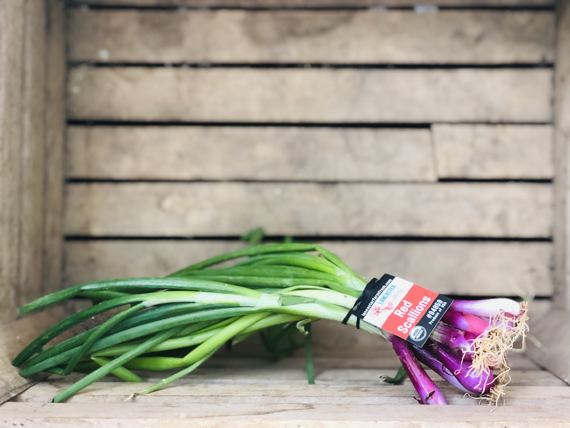 Red Scallions, 1 bunch