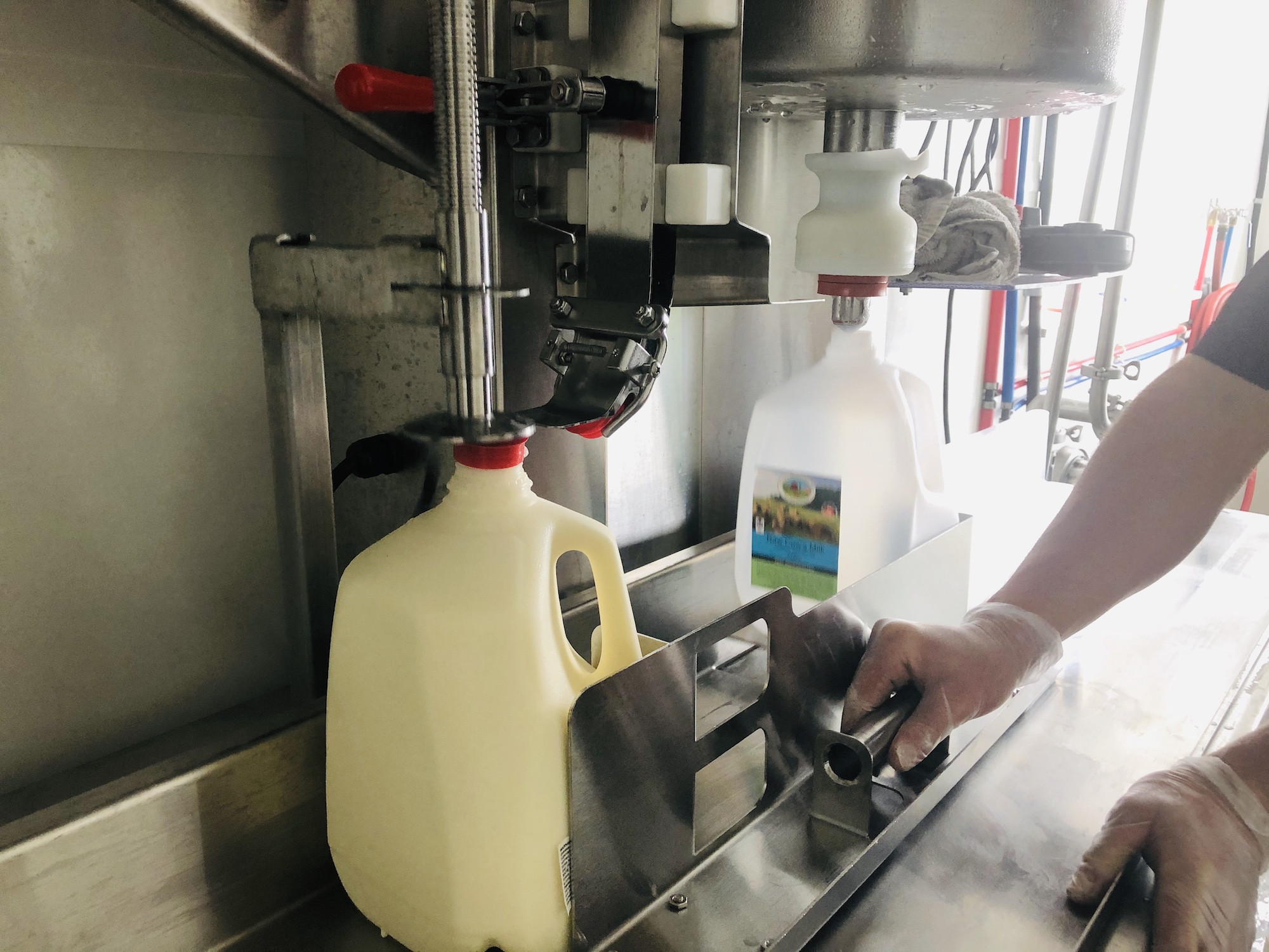 How to store and use raw milk with confidence