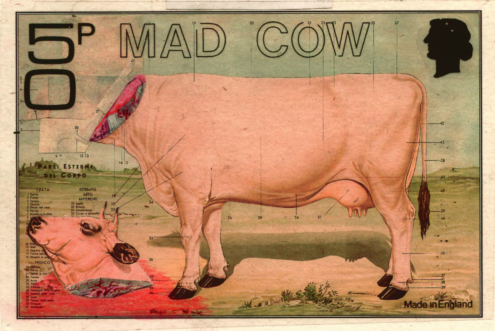 How the fear of Mad Cow Disease lives on