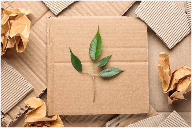 Do you love the planet and want sustainable packaging?