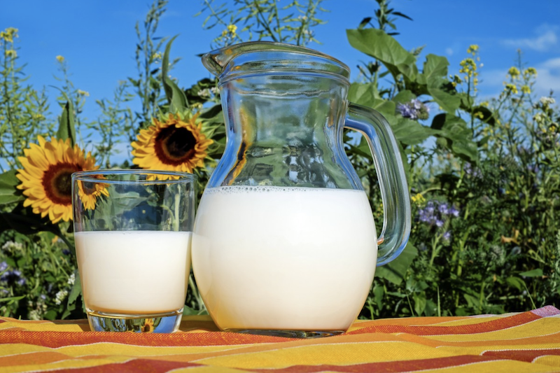 The 2 big reasons Miller's milk may be more digestible