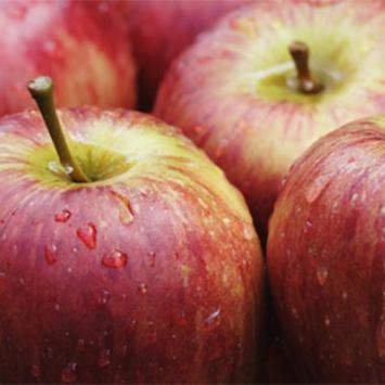 Apples, Large, IPM