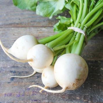Baby Hakerei Turnips