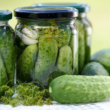 Fermented Whole Dill Pickles