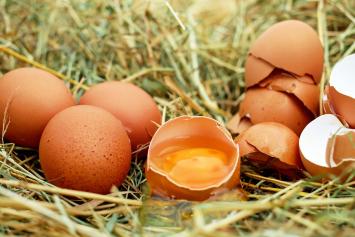 Regular Chicken Eggs, 1 dozen