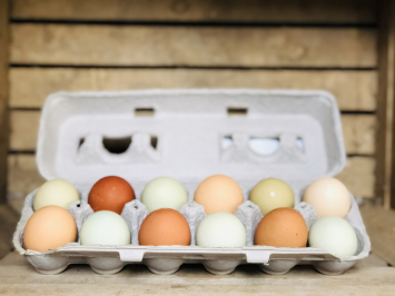 Multicolored Country Select Soy-Free Chicken Eggs, 1 dozen