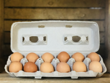 Small Brown Chicken Pullet Eggs (soy-free)