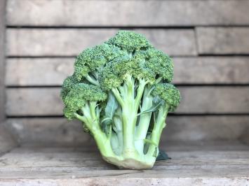 1 - Broccoli Crown