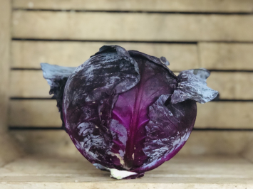 1 head - Red Cabbage