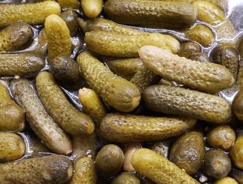 Fermented Dill Pickles, 1 quart