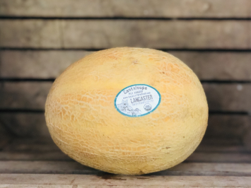 1 - Little Sweetie Cantaloupe