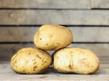 White Kennebec Potatoes, 1lb