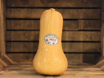 1 - Butternut Squash