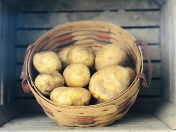 Yukon Gold Potatoes, 5lb