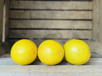 10lb - Lemons