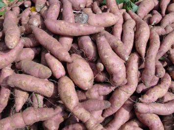 1lb - Small Purple Sweet Potatoes