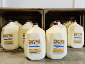 10 gallons - Raw A2 Milk Bundle
