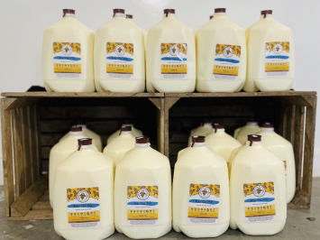 20 gallons - Raw A2 Milk Bundle