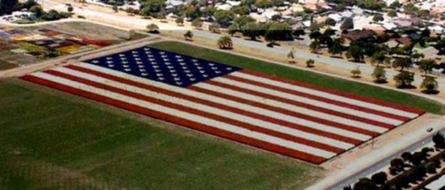 American-Flag-Overhead.jpg