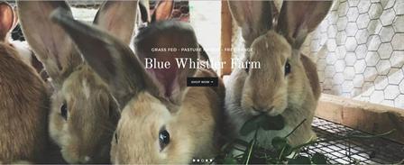 Blue Whistler Farm