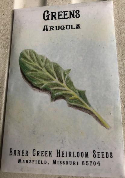 Arugula Greens- Seeds