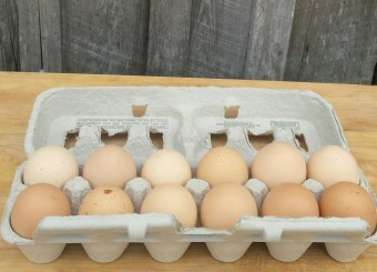 Chicken Eggs (5 Dozen)
