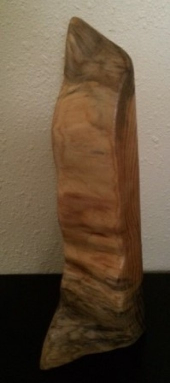 Wood Art- 18 Years of a Pine