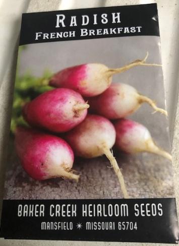Radish- French Breakfast Seeds