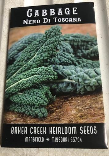 Cabbage- Nero Di Toscana Seeds