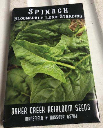 Spinach- Bloomsdale Long Standing Seeds