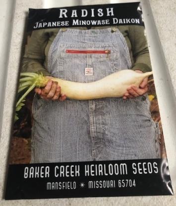 Radish- Japanese Minowase Daikon Seeds