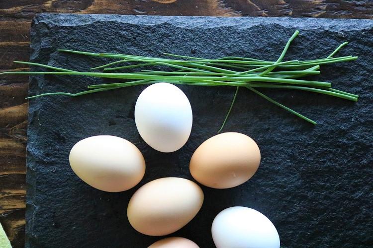 Eggs- Medium