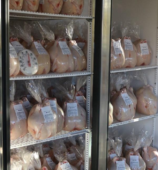 Chicken - Whole Chicken Bulk Order of 10