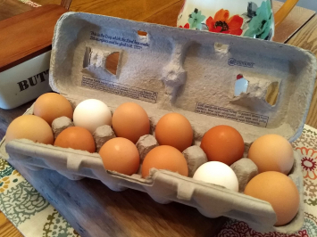 Eggs, 4 Dozen Bundle