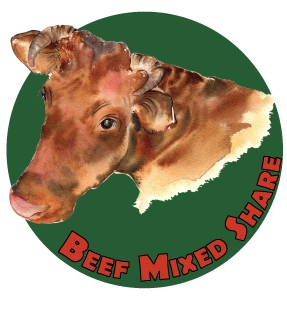 Beef Mixed Share Bundle